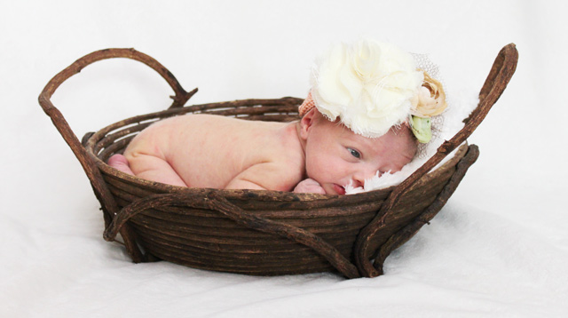 girl newborn photos basket