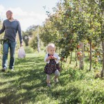 Peck & Bushel – Apple Orchard 2015